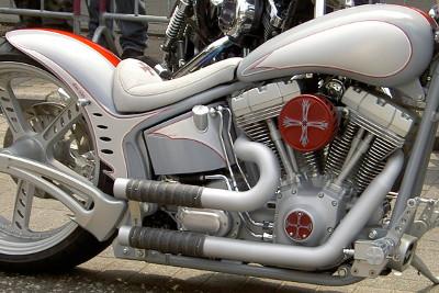 Springer Custom